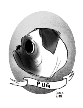 Pug by fooshigi