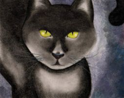 Sketch: Black Kittie by PaolaZunico