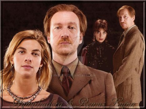 Remus und Tonks Lupin by Phebe76