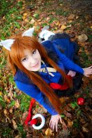 Holo. Spice and Wolf Cosplay by Giuzzys