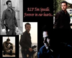 R.I.P Tim Speedle by animequeen23