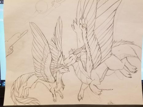 wip: Local dragons go bleep by TomoCreations