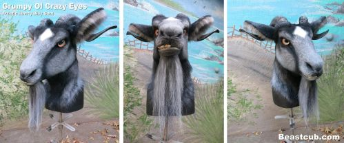 Crazy Eyes - Billy Goat by LilleahWest