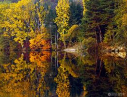just autumn by adypetrisor