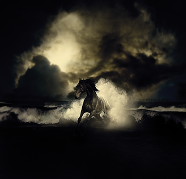 From The Sea by xaugustx