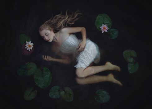 the dying swan by baravavrova