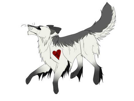Adoptable collie 1 CLOSED by Padded-Paws