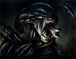 The Alien by fromthedead