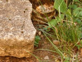 Stones in detail by ithilwenia