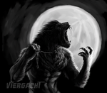 Werewolf Wednesday 6-13 by Viergacht
