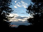 Sunset Between the Trees by Michies-Photographyy