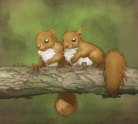 red squirrels by Leen-galeas