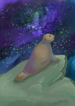 Space seal by saysoifyouwantto
