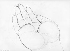 My Hand: Contour Study by MeanBean06