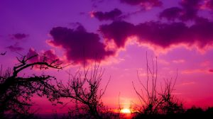Sunset 165 by Lexia84