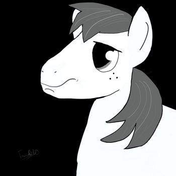 Gray Stallion by tenseconds10