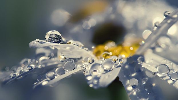 Water Drops by TidebuyReviews
