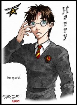 HP Character 2 - Harry by Tanci