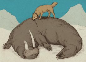 hige and the walrus by gescheitert