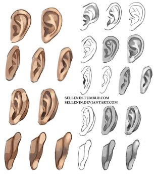 Ears reference by Sellenin