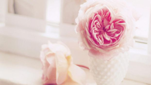 Wallpaper Flower._ 2 by Tutosunicons