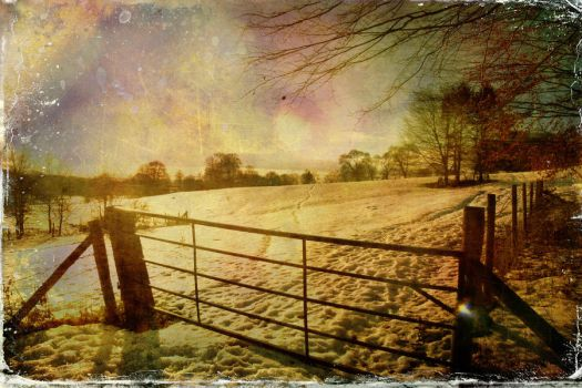 Wolds Way December by Philip-ed
