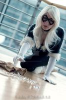 Catch! - Black Cat Cosplay by CiriCosplay