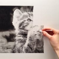 In Progress 'Enlightened Kitty' pencil drawing by SamanthaMessias