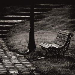 Le banc by ThierryV