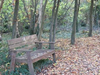 Bench by Fall-Leaves-Club