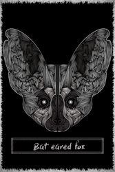 -- Bat eared fox -- by 0l-Fox-l0