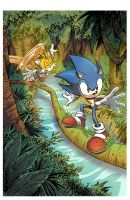 Sonic The hedgehog_253_001 by culdesackidz