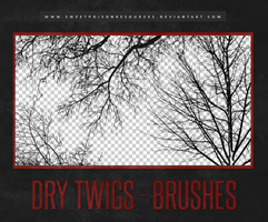 Dry Twigs - Brushes by sweetpoisonresources