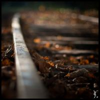 Autumn Track by KantX-Photography