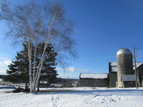 Old Dairy Farm Winter by ChristineWeatherly