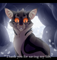 Thank You - Speedpaint by recovery-paws
