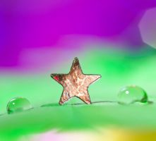 Magical star by pqphotography