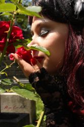 Little roses tell a story by SymphonicA19