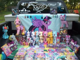 My MLP colletion 2015 by ShiningRainbow99