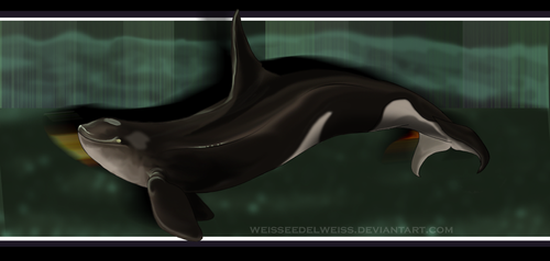 Antarctic (Cappuccino) Shadow Killer Variant by WeisseEdelweiss