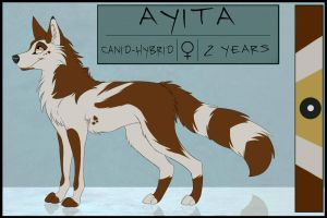 Ayita Reference *OLD* by Nightryx