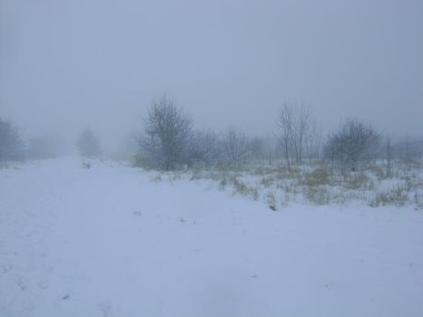 snowy fields -fog- 80 by dark-dragon-stock