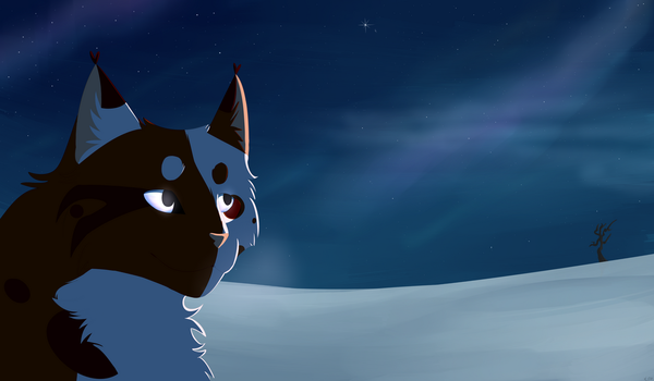 Sky full of stars - [Art trade with TheRealnaPokeX by xLonley