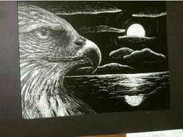 Scratchboard Eagle by emmacatarina9900
