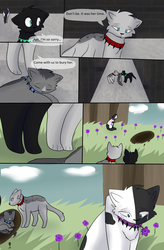 Bloodclan: The Next Chapter Page 39 by StudioFelidae