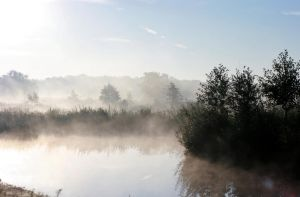 Early Dutch autumn morning by Dewfooter