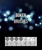 Quality Bokeh Brushes by MosheSeldin