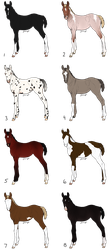 Collab. Foal Adoptables Batch - CLOSED by Anonymous-Shrew