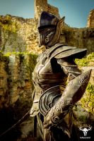Skyrim Ebony Armor - cosplay photo No. 3 by Folkenstal