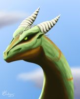 Green dragon by Garlegas